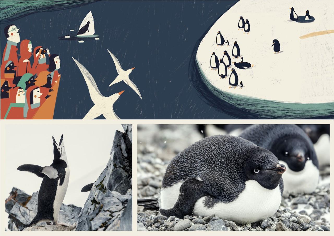ilustración de pingüinos en la antártida