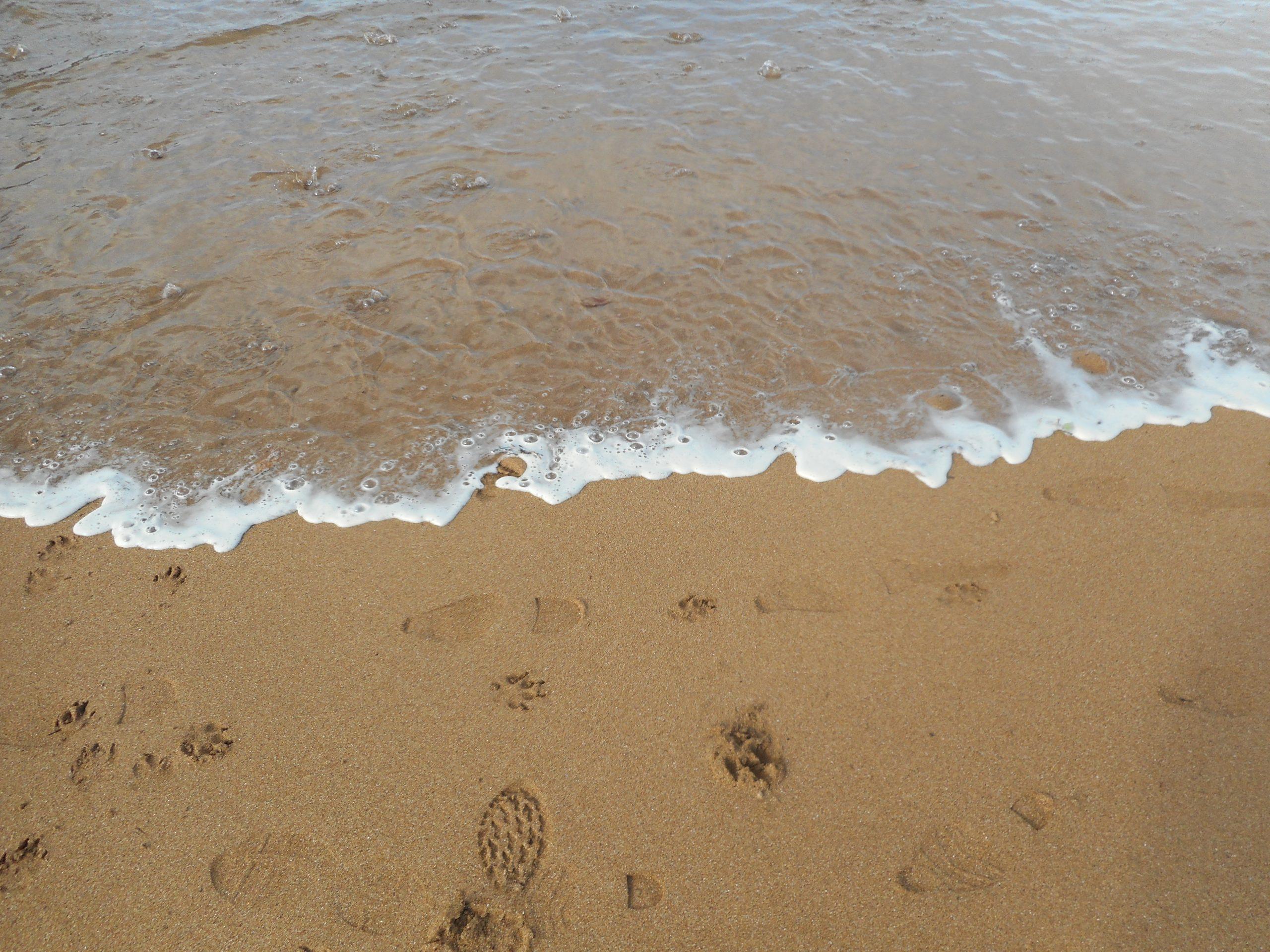 Queremos playas limpias.