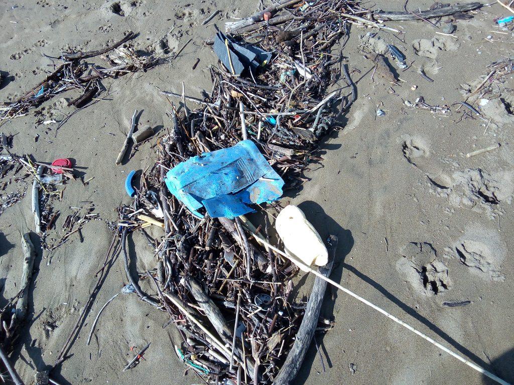 La basura que acumulamos acaba con la biodiversidad