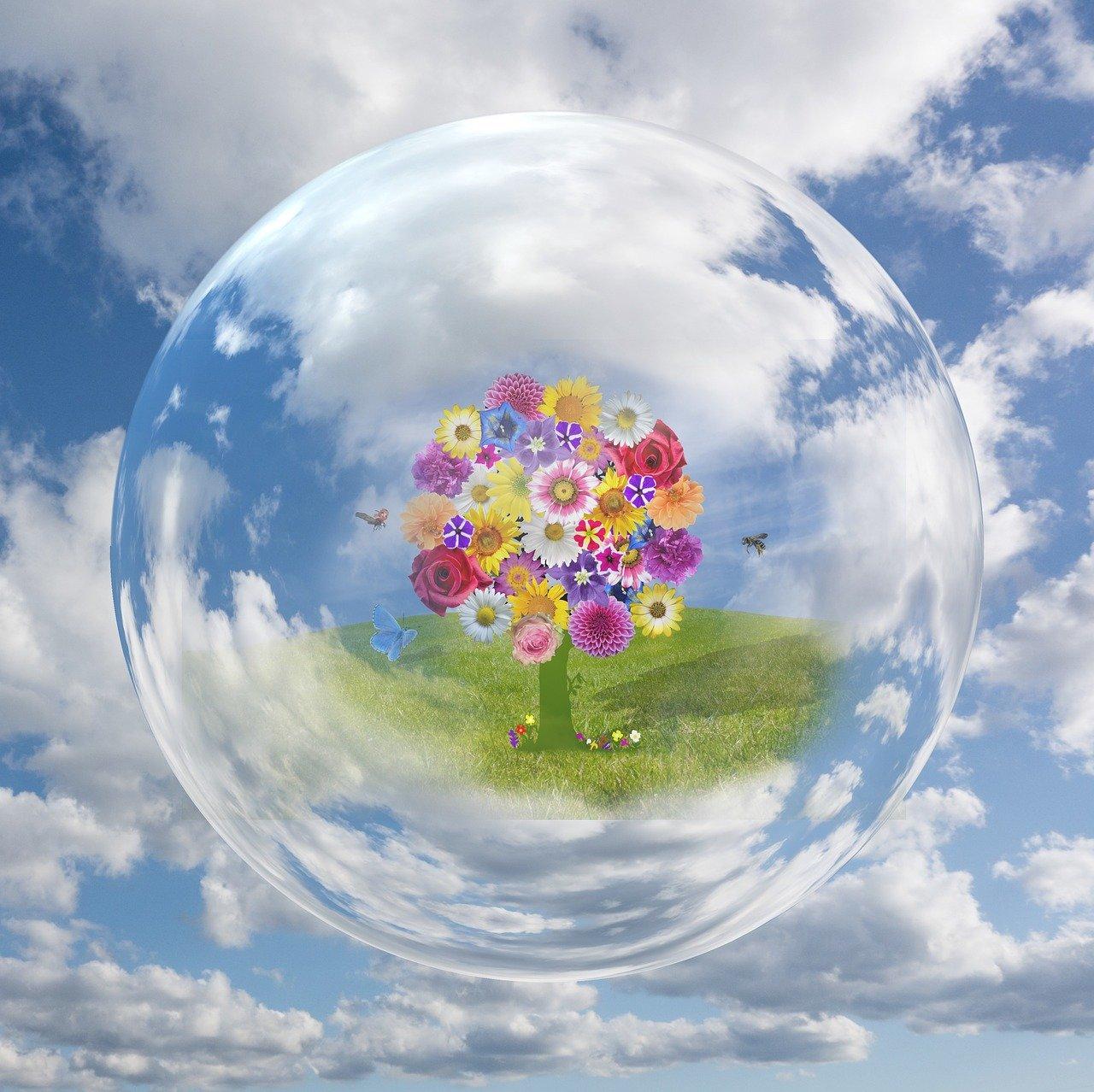 cuidar el planeta desde el corazón.jpg