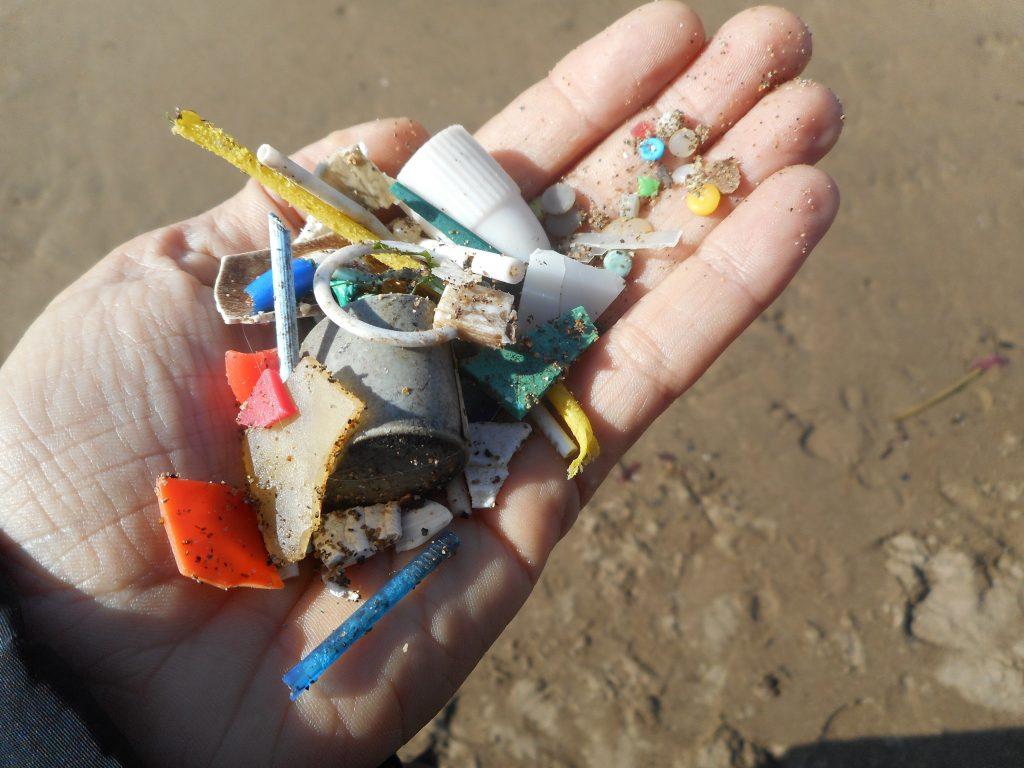 Basura y microplásticos recogidos